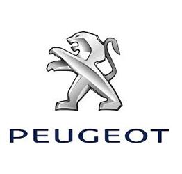 Peugeot Otomatik Cam Kriko Parçaları